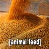 image of animal feed